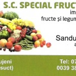 special-fruct-550